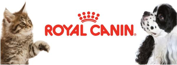 royal canin food guide chart