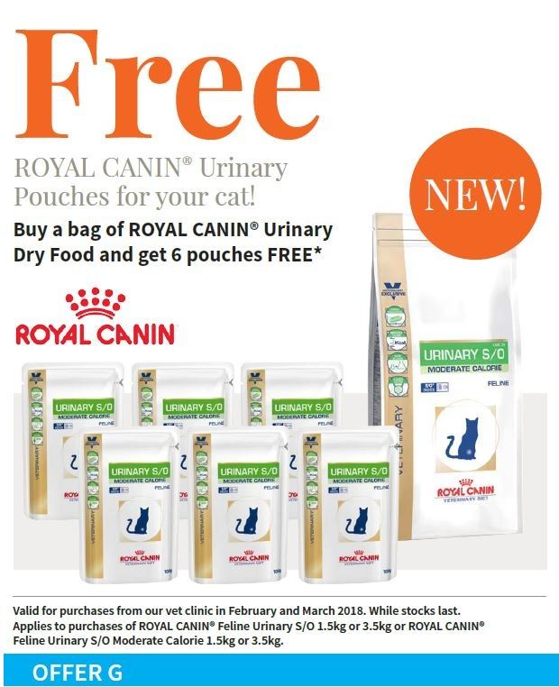 code promo royal canin